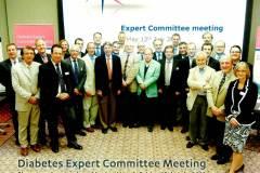 DiabetesExpertMeeting